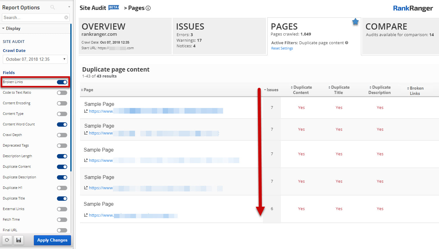 Site Audit Pages Report