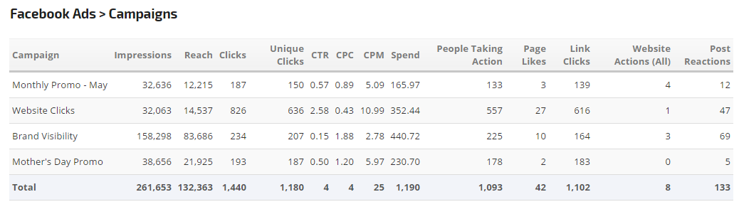 Facebook Ads Campaigns Report Table