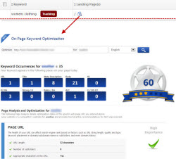 Launch On-Page Keyword Optimization Tool